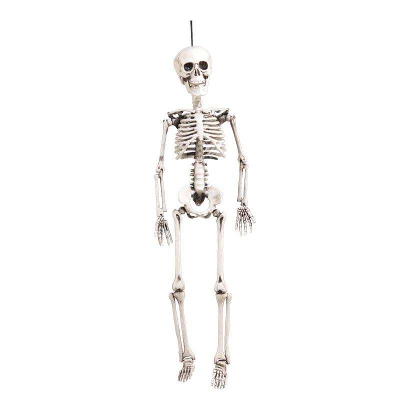 Skelett, 60x18cm, Kunststoff