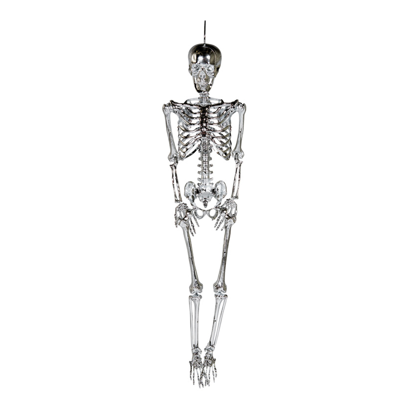 Skelett mit Hänger, 165cm beweglich, aus Kunststoff