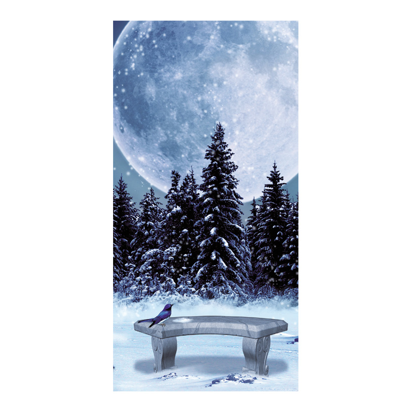 "# Motivdruck ""Winternacht"", 180x90cm Stoff"