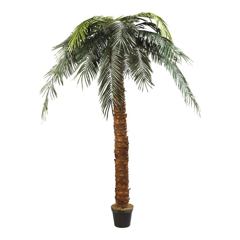 # Phönix-Palme im Topf, 300cm, Kunststoff, Kunstseide