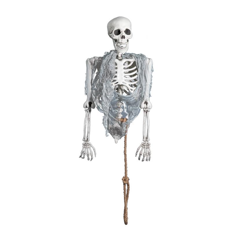 Skelett-Torso, 80cm kopfüber hängend, mit Lichteffekt, inkl. Batterien